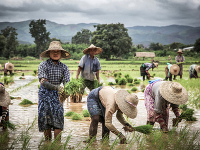 ND-GAIN Updates Climate Adaptation Index: Good News for Myanmar, Bad News for Brazil